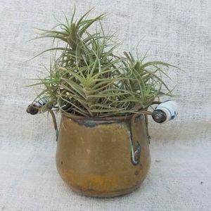 Vintage Brass Plant Pot Delft Handled Farmhouse